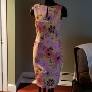 Brand New WOT David Meister Lined Sleeveless Dress
